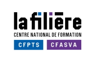 La Filière CFPTS